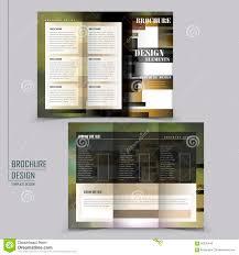 Abstract Tri Fold Brochure Template Design Stock Vector