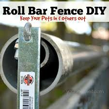 diy invisible fence reviews 38 best cat fence images on