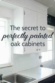 paint cabinets whiteBest 25 Painting oak cabinets ideas on Pinterest  Oak cabinet