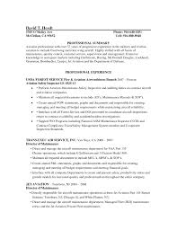 Painter Resume Examples Aircraft Sample Eagle Security Officer