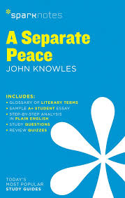 com a separate peace sparknotes literature guide com a separate peace sparknotes literature guide sparknotes literature guide series 9781411469792 sparknotes john knowles books