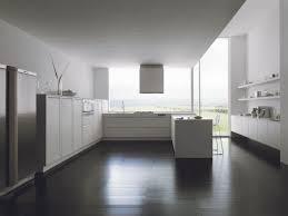 Kitchen Flooring Options Vinyl Kitchen Design With Modern Remodel Pictures Kitchen Renovation