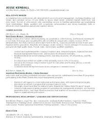Real Estate Website Templates Business Template For Agent