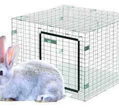 bedding for bunnies rabbit cage bedding rabbit cage wire bedding for bunnies best bedding for rabbits