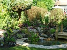 Small Picture small backyard pond diy Small Backyard Ponds To Freshen Your