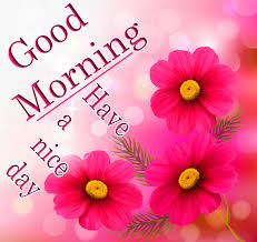 good morning have a nice day have a