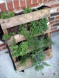 Small Picture Herb Garden Box Plans With Vegetable And Herb Garden Design In