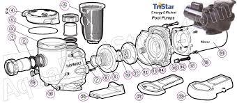 hayward tristar pump installation and maintenance hayward tristar pump parts