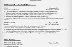 hr resume objective human resources analyst resume examples human hr analyst resume