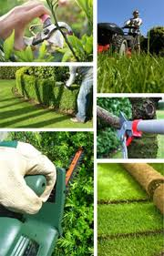 garden maintenance service. Perfect Garden Garden Maintenance For Garden Maintenance Service R