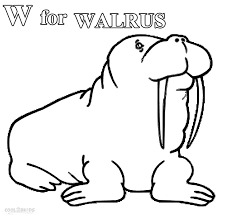 Small Picture Cute Walrus Coloring Page Coloring Coloring Coloring Pages