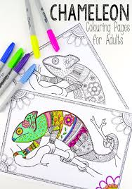 Colouring Pages For Grown Ups Chameleons Red Ted Art