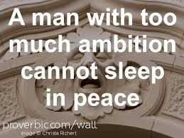 the best macbeth ambition quotes ideas macbeth proverb of the day a man too much ambition cannot sleep in peace lady macbethcan