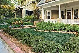 Maintenance Free Garden Designs No Mowing Required