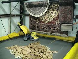 oriental rug cleaning plant in humble tx serves all of houston we are houston s