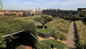 green roofs green islands in the city