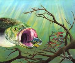 large mouth bass painting large mouth bass and clueless fish by sonya barnes