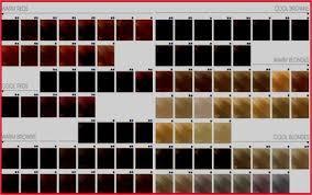Goldwell Hair Color Chart Www Imghulk Com