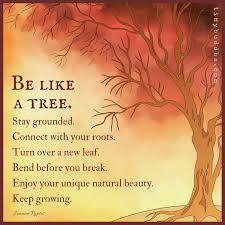 Tree Of Life Quote Best Fruit Of The Tree Of Life Elegant Tree Life Quotes Welcome To
