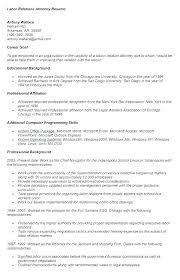 General Job Resume General Labor Resume Examples General Laborer