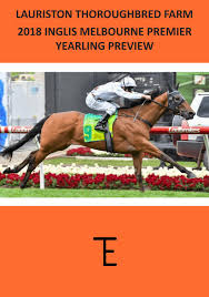 Thoroughbred Christmas Lights 2018 Ltf 2018 Melbourne Premier Yearling Preview By Lauriston