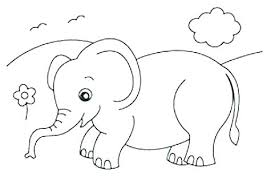 baby elephant coloring page cute baby elephant coloring pages ant coloring pages baby elephant color pages