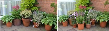 Alan Titchmarsh Tips For A Colourful Autumn Garden  Garden  Life Container Garden Ideas Uk