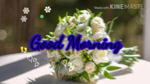 Good Morning Images Photos GIF video ...