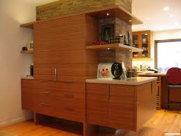 Bamboo Cabinets Kitchen Unique Bamboo Kitchen Cabinets Bamboo Kitchen Cabinets Ikea Cdxnd