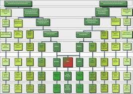 Family Tree Cousins Chart Cousins Chart Genealogy Chart Family Genealogy Family