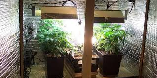 Basement Grow Room Design Amazing How To Setup A Low Budget Grow Room