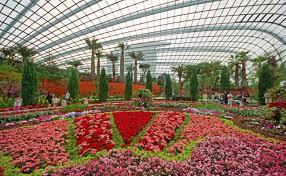 garden dome. Cashback 500* Garden Dome S