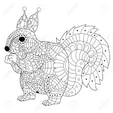 squirrel style for coloring book tattoo t shirt design stock vector 63435061