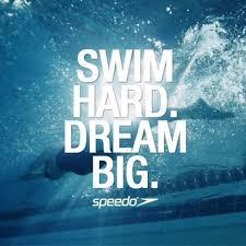 Swim Quotes Extraordinary Bd48da48decfaf48ce48c34488f9794848483488swimteamquotesswimsayingsjpg