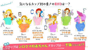 Bra Cup Size Comparison Chart Japanese Lingerie Firm Unveils Chart Which Reveals Which
