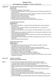 Hr Executive Resume Sample In India Human Resources Samples Manager