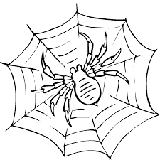 Small Picture Free Printable Spider Web Coloring Pages For Kids