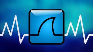 What Is Wireshark Software Hackers League Medium