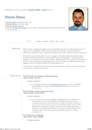 Web Developer Resume Template Web Developer Resume Template Resume