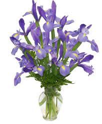 FLEUR-DE-LIS <b>Iris</b> Vase in Tampa, FL - Stunning <b>Flowers By</b> Shelbie