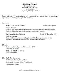 Simple Easy Resume Basic Sample Resume Skills Examples For Technical How To List On A