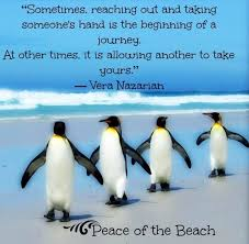 Penguin Love Quotes Enchanting Penguin Love Quotes Best Quotes Everydays