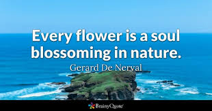 Quotes About Flowers Blooming Impressive Flower Quotes BrainyQuote
