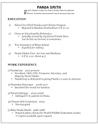 Sample Resume For Customer Service In Retail Robert Irvine Resume