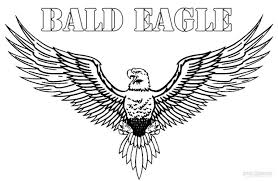 Small Picture Free Printable Bald Eagle Coloring Pages For Kids Eagle Coloring