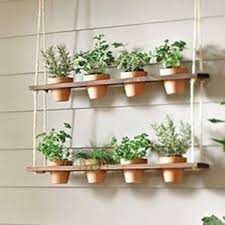 Do It Yourself Window Mounted Hanging Herb Garden | Fresh herbs, Herbs  garden and Herbs
