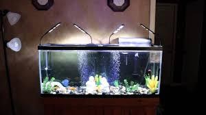 Fish Tank Lights Cheap 3 Mode 48 Led Aquarium Ebay Fish Tank Light Kit