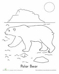Small Picture 27 best Bears images on Pinterest Coloring pages Preschool