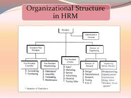 Human Resource Department Organizational Chart Influence Of Organisation Structure On Hrm Coursework Sample
