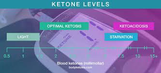 5 Best Blood Ketone Meters In 2019 Beginners Guide